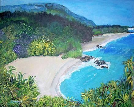 Lumahai Beach in Hawaii by Teresa Dominici