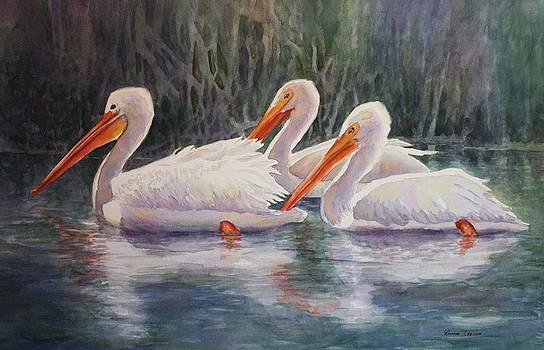 Luminous White Pelicans by Roxanne Tobaison