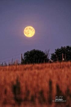 Lunar light lifting by Dan Quam