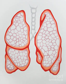 Lungs by Aisha Klippenstein
