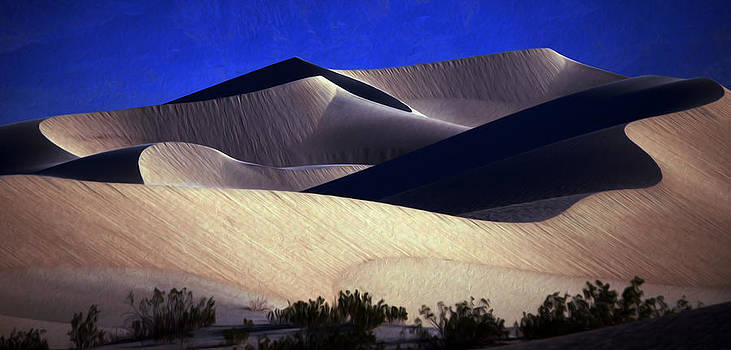 M E S Q U I T E D .   The Mesquite Dunes, Death Valley, California by Joe Schofield