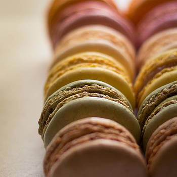 Macarons in Assortment by Janelle Yeager