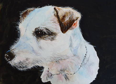Macy the Jack Russell Terrier by Carole Powell