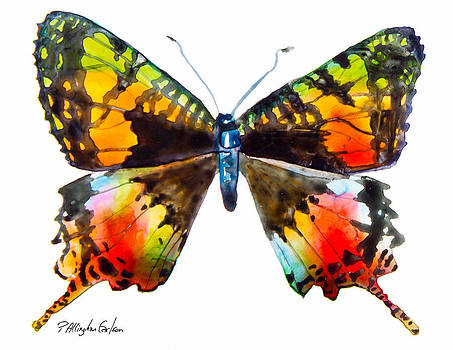 Madagascan Sunset Moth by Patricia Allingham Carlson