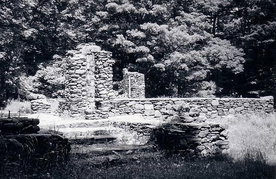 Madame Sherri Castle Ruins by David Fiske