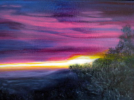 Madison Pink Sunset by LaVonne Hand