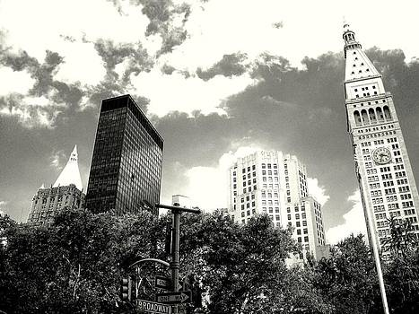 'Madison Square Towers' by Liza Dey