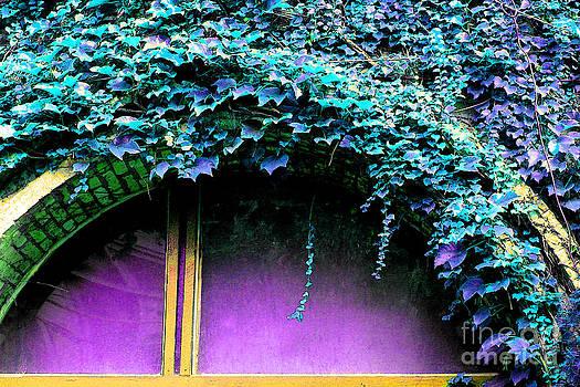 Magenta Window by Ginny Gaura