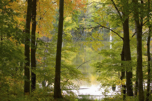 Magical Maplewood by Penny Meyers