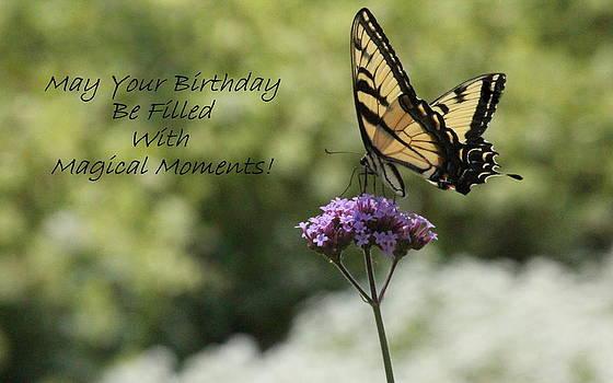 Rosanne Jordan - Magical Moment Birthday