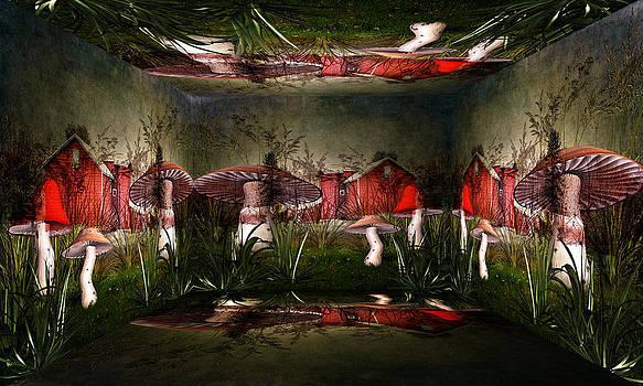 Pamela Phelps - Magical Mushroom Farm
