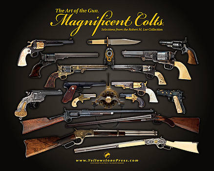 Magnificent Colts Chapter Sampler by Yellowstone Press