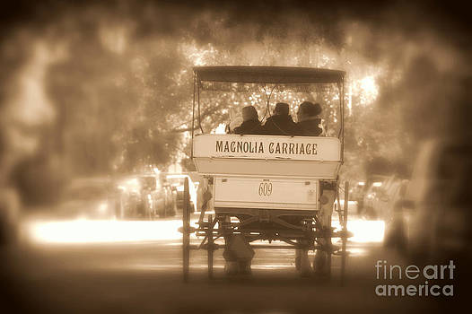 Magnolia Carriage by Pete Dionne