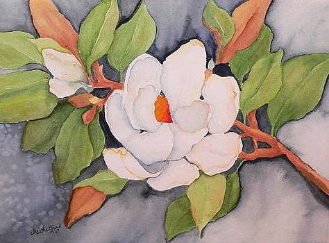Magnolia by Martha Efurd