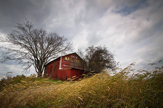 Mail Pouch Abandoned Barn by Victoria Winningham