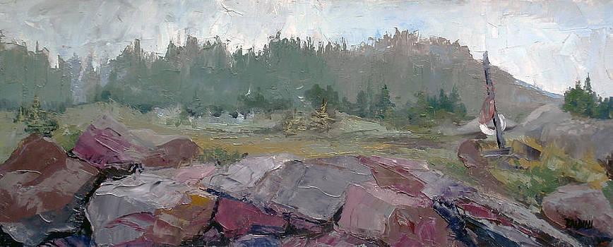 Maine Cove in Fog by J R Baldini