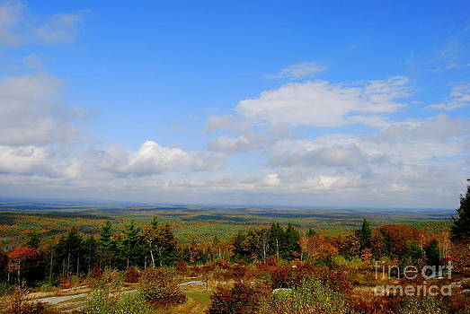 Maine In Autumn by Eunice Miller