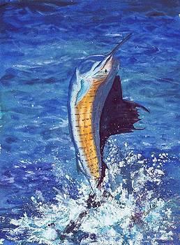 Majestic Sailfish by Barb Capeletti