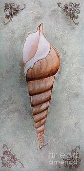 Majestic Shell by Sharon Wilkens