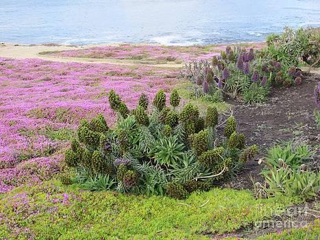 Majestic Shoreline by Joseph Baril