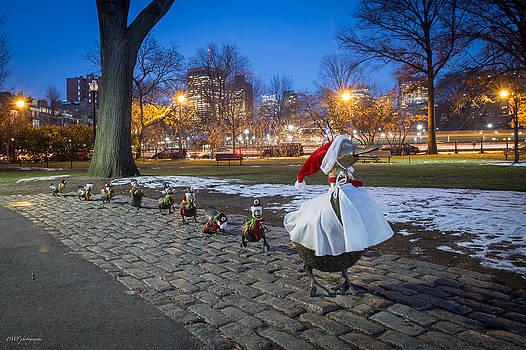 Make Way for Christmas Ducklings II by Paul Treseler