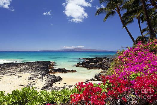 Makena Cove Maui 2 by David Olsen