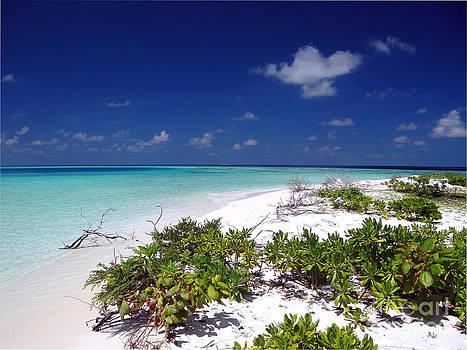Maldives 07 by Giorgio Darrigo