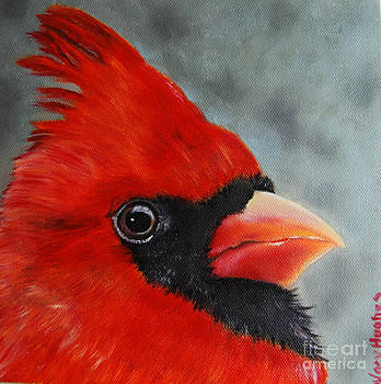 Male Cardinal by Mary Hughes
