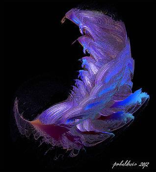 Male Crustacean - Fighting Class by Patrice Baldwin
