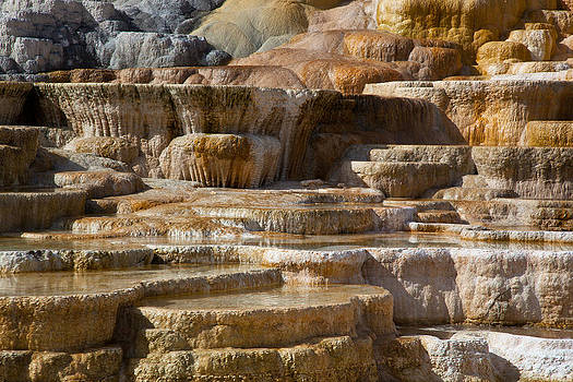 Mammoth Hot Springs by Eugene Dailey