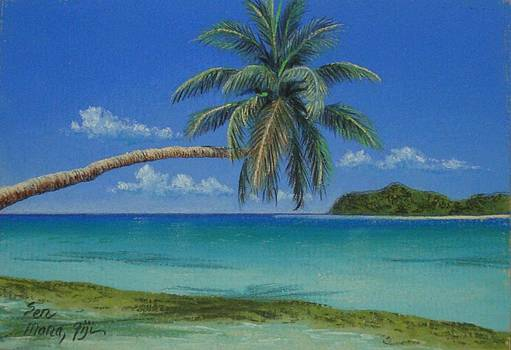 Mana Beach by Pravin  Sen