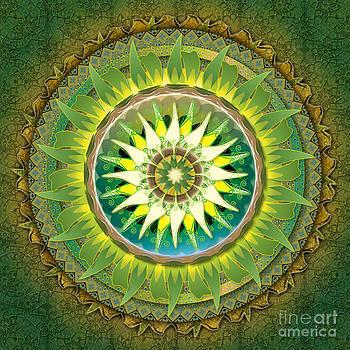 Bedros Awak - Mandala Green