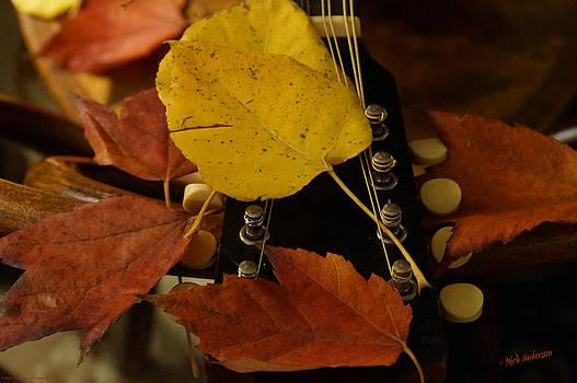 Mick Anderson - Mandolin Autumn 4