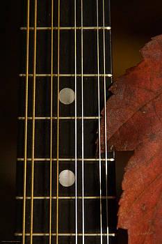Mick Anderson - Mandolin Autumn 7