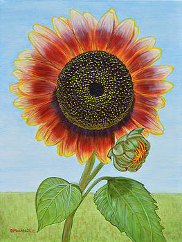 Mandy's Magnificent Sunflower by Donna  Manaraze