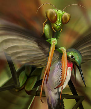 Mantis vs Hummingbird by Jessica LeClerc