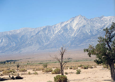 Manzanar-Sierra Nevada Mountains I by Harold E McCray