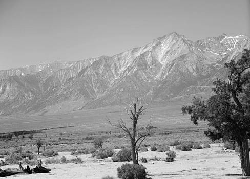 Manzanar-Sierra Nevada Mountains II by Harold E McCray