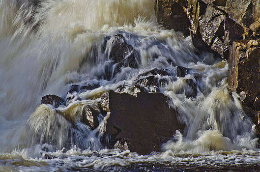 Maple Leaf Rock in the Falls by Roger Lewis