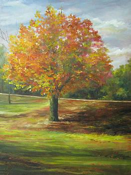 Maple Tree by Gloria Turner