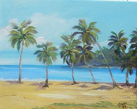 Maracas Beach 2015 by Samantha Rochard