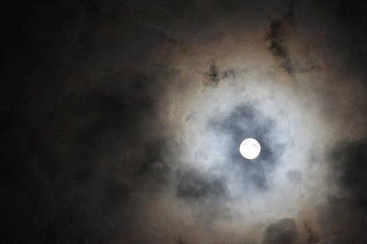 Marco Moon by Graham Hayward