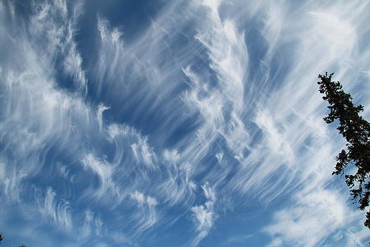 Mare's Tails by Donna Quante