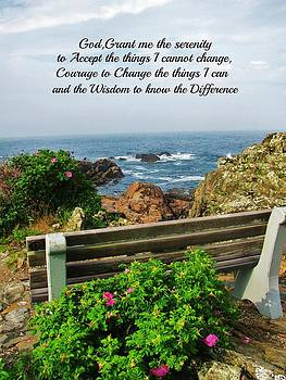 Marginal Way Serenity Bench by Diane Valliere