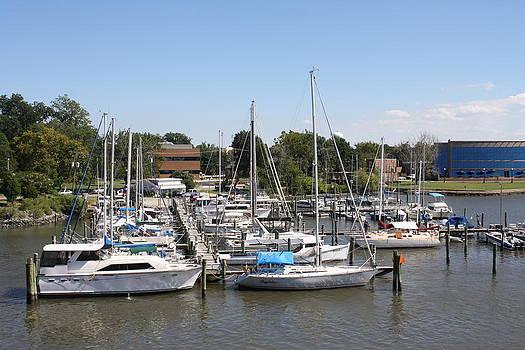 Marina on Hampton River by James Lawson