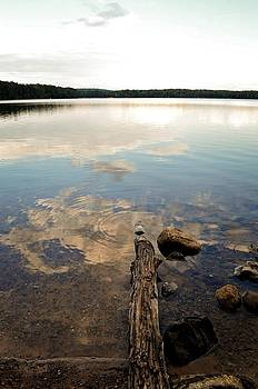 Michelle Calkins - Marion Lake Reflections