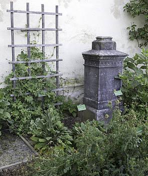 Teresa Mucha - Marksburg Castle Herb Garden 02
