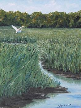 Marsh Creek by Stanton Allaben