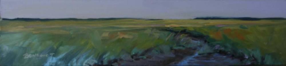 Marsh Jewels by Barbara Benedict Jones