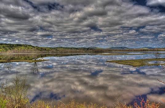 Marsh Reflections by Roger Lewis